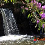 Cachoeira Paraiso em São Thomé das Letras
